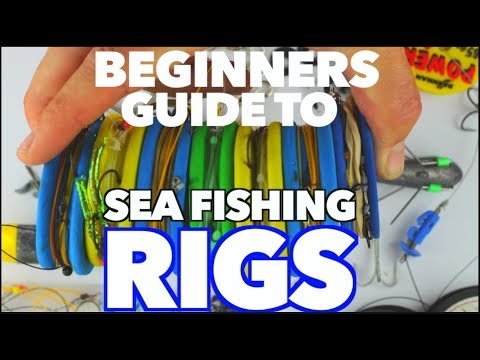 EP:4 Sea Fishing Beginners Guide To RIGS