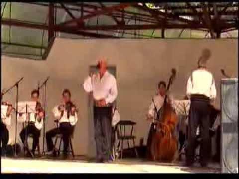 Adrian Stanca colaj la festivalul concurs a cintecului din tara Zarandului editia45, BAILE MONEASA.