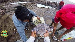 Como Pescar En El Mar   Pescadores Artesanales