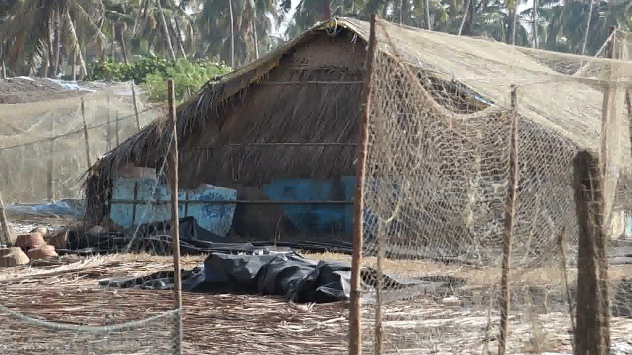 Colva Beach Goa 1080hd