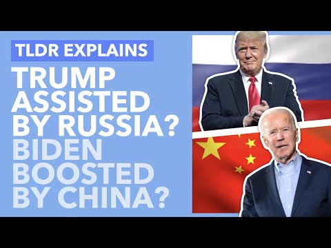Russia And China Meddle In 2020? The Impact Of Foreign Election Interference Explained - TLDR News