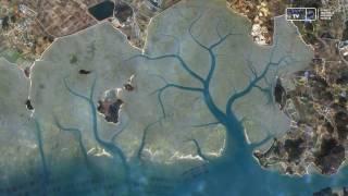 [KARI] 전남 신안군 압해도의 갯벌 이미지