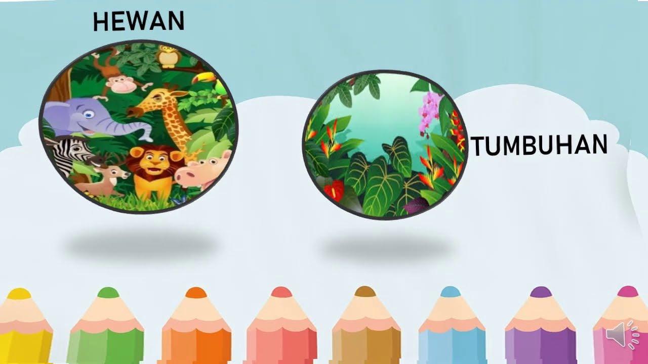 Cara Merawat Tumbuhan Dan Hewan Tema 2 Kelas 3 Youtube Cara merawat tumbuhan dan hewan