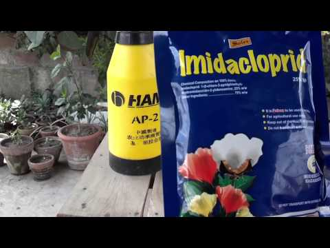 Common Pesticide | What Is a Pest | Pesticides Used Today (Urdu/hindi)