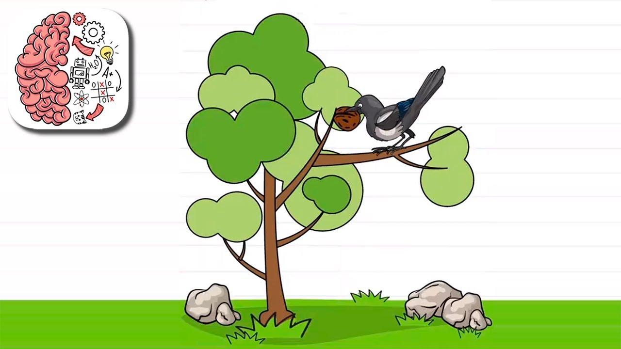 Как пройти Brain Test 168 уровень Бедная ворона не может съесть грецкий орех.