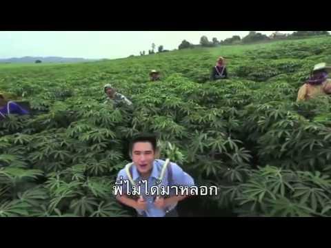 ล่อเลียน (MV) ภูมิแพ้กรุงเทพ