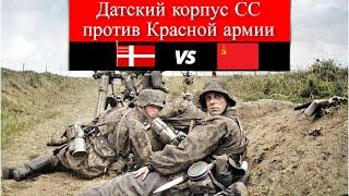 Датский корпус СС против Красной армии.