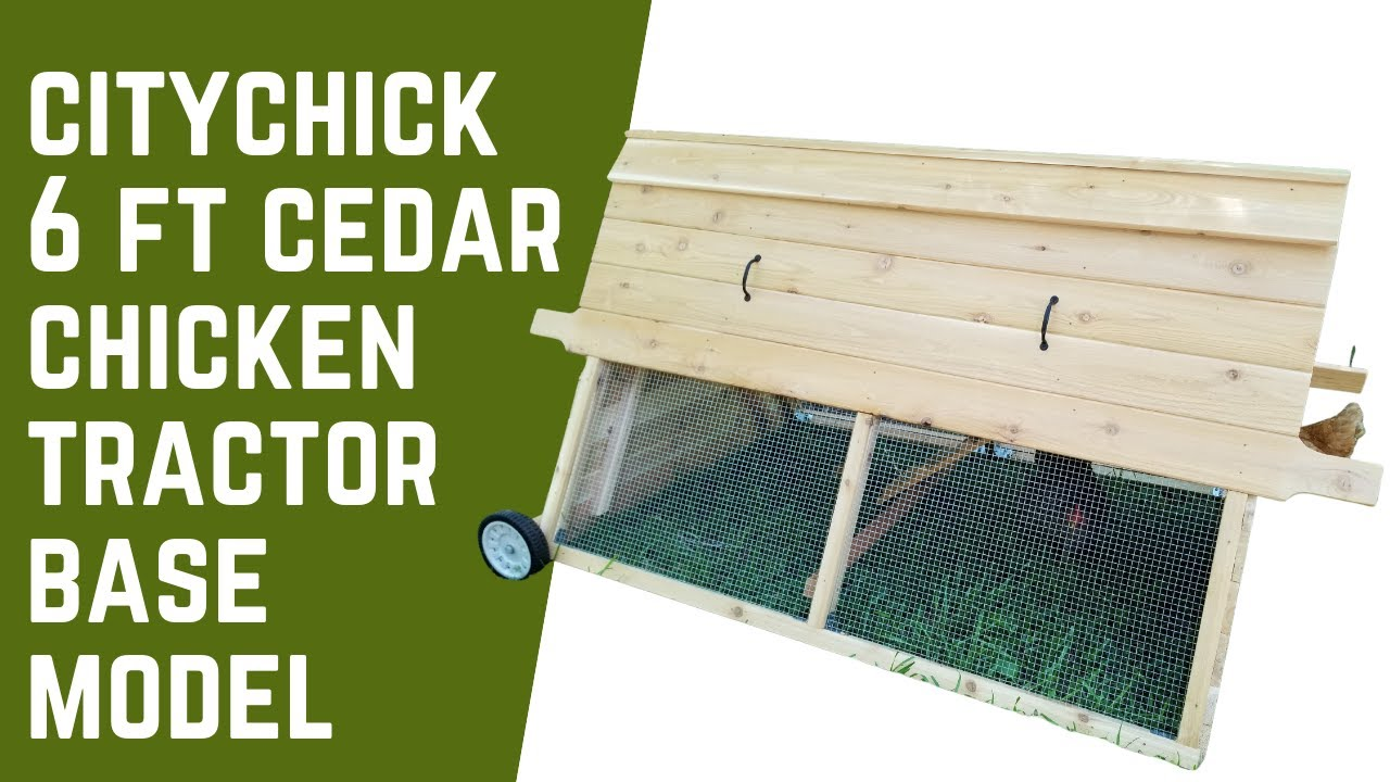 CityChick 6 ft Cedar chicken tractor - base model