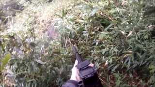 疾走するイノシシに3発発砲し、腹2発と脚に着弾していたのですが逃げら...