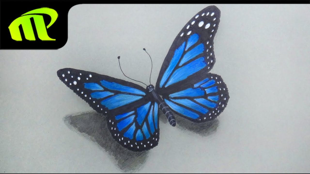 Beautiful Butterfly Drawing - Time Lapse - YouTube