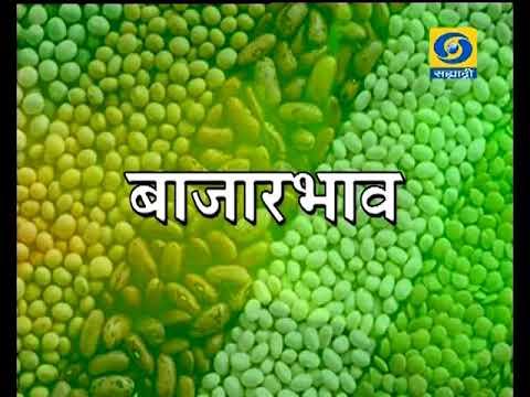 Krishivarta Bajarbhav - 08 June 2018 - कृषीवार्ता बाजारभाव