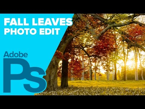 How To Create Fall (Autumn) Leaves In Adobe Photoshop