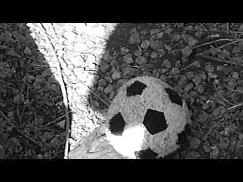 DEBRIS SLIDE - FANTASY FOOTBALL IS RUINING MY LIFE