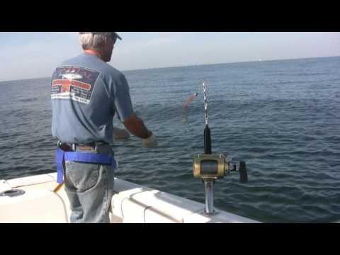 Captain Nick Tuna Fishing Alone In Massachusetts: Best Tuna Fishing Charters