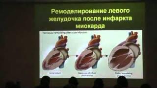 Ветеринарная кардиология 4.02.avi(, 2011-12-02T09:48:04.000Z)