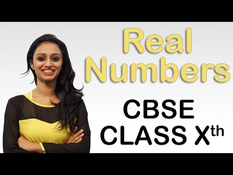 Real Numbers Ex 1.1 Q - 4, NCERT Maths Class 10th