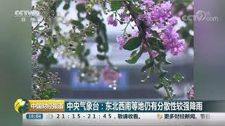 [中国财经报道]中央气象台:东北西南等地仍有分散性较强降雨| CCTV财经