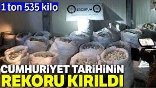 Erzurum da 1 Ton 535 Kilo Ele Geçirildi