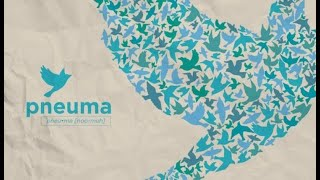 Pnuema Week 4 - Talking to the wind in the Mulberry tree's