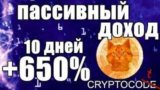 Пассивный доход на криптобирже бинанс как заработать криптовалюту, инвестиции IEO Binance Launchpad