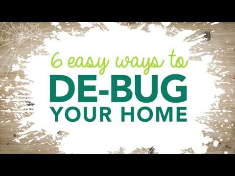 6 Easy Ways to Get Rid of Common Household Bugs