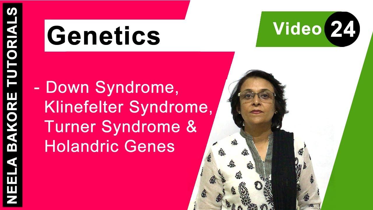 genetics - down syndrome, klinefelter syndrome,turner syndrome