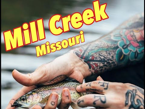 Fly Fishing Mill Creek (Summer 2019)