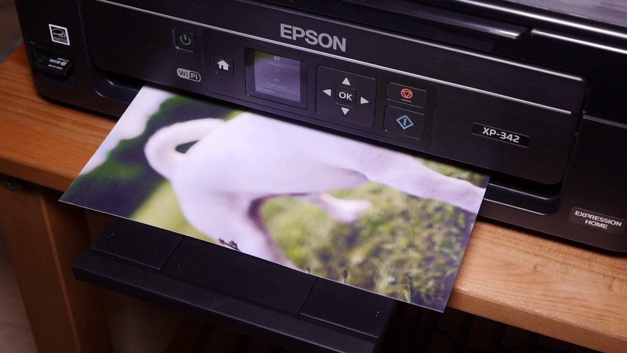 Предлагаем купить принтер или мфу с снпч (системой непрерывной подачи чернил) epson эпсон в одессе. Экономия на печати до 25 раз. Установка.