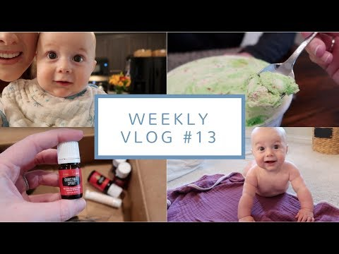 Parents for a Week + Etsy Madness | Weekly Vlog #13 | Nov. 6-10, 2017