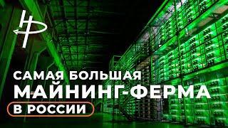 Экскурсия по самой большой майнинг-ферме в России