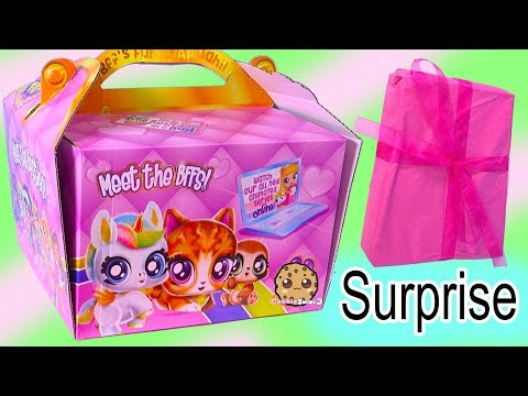 BFF Pets + Dolls Best Furry Friends  Giant Surprise Package Box  Cookie Swirl C Doll