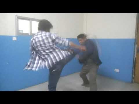 Donnie yen fight copy (Rohan jirel vs Pema Dorje Lama)