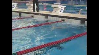 55-59 Masters Swimming World Record 400 free Lynn Marshall