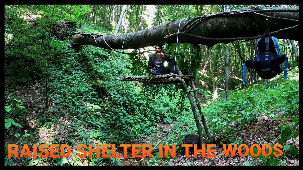 Great shelter in the woods, Bushcraft solo overnight, building shelter