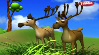 Deer Nursery Rhyme | Animal Rhymes | Nursery Rhymes For Kids | Nursery Rhymes 3D Collection