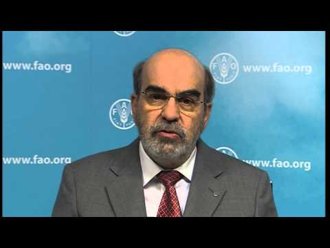FAO Director-General José Graziano da Silva introduces ICN2
