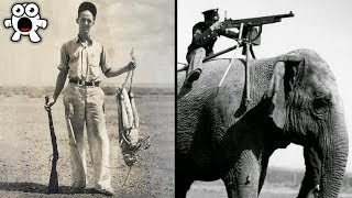 Historical Photos You Must See Before You Die (Part 1)