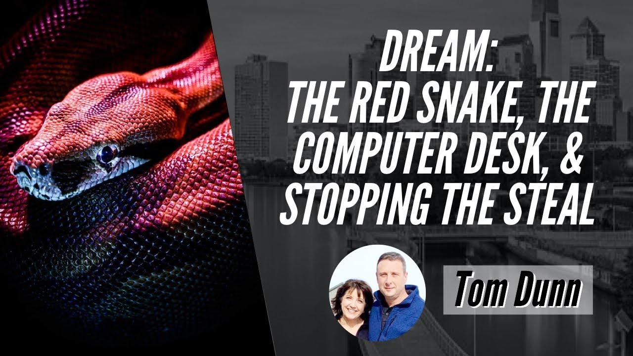 DREAM: THE RED SNAKE, THE COMPUTER DESK, & STOPPING THE STEAL