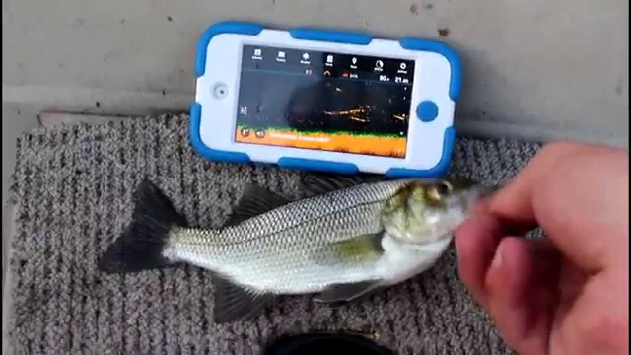 The deeper wireless smart fish finder actually works for How does a fish finder work
