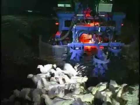 Hühner-Erntemaschine - effektiv oder grausam? E-Z Catch chicken harvester