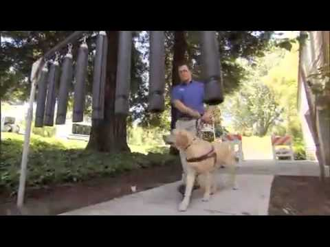 IAS' David Cooper featured on National Geographic's Blue Collar Dogs