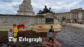 video: Victoria Memorial outside Buckingham Palace vandalised by Animal Rebellion activists