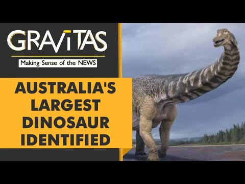 Gravitas | Meet Cooper: Australia's Largest Dinosaur