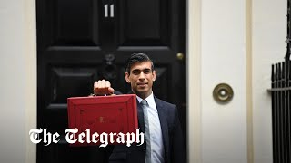 video: Budget 2021 latest news: Rishi Sunak insists 'our plan is working' as he cuts taxes and turns on spending taps