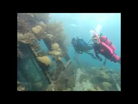 Dive Imports Australia - PADI Wreck Diver Course
