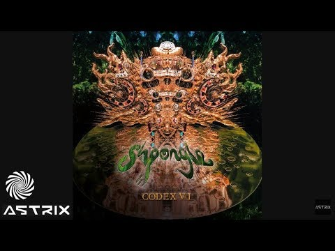 Shpongle & Astrix - Strange Planet