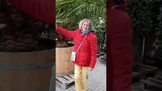 Bettys Fulda & Friends Folge 8: Fulda erblüht