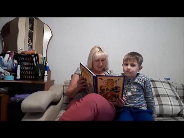 Изображение предпросмотра прочтения – НатальяМаркина читает произведение «Сказочное путешествие Нильса с дикими гусями» С.Лагерлёф