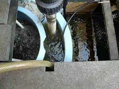 Diy mechanical filter for koi pond with vortex youtube for Mechanical pond filter