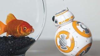 HI-TECH ВИСОКІ ТЕХНОЛОГІЇ НА ALIEXPRESS! Дроїд BB-8 і Ninebot mini